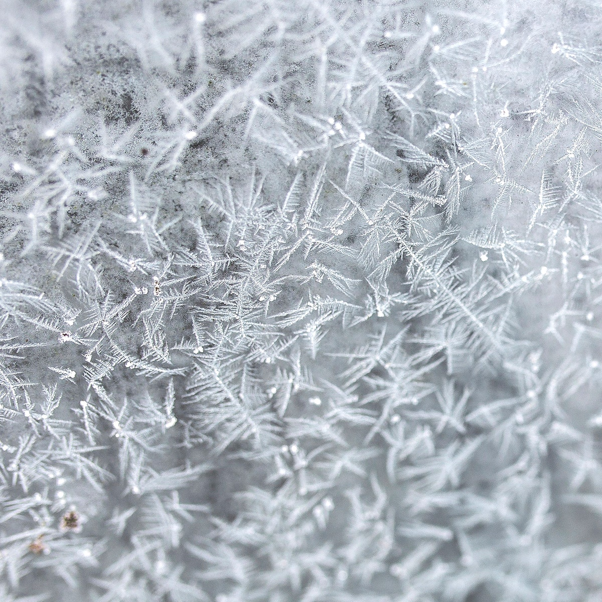 Frost on a window background