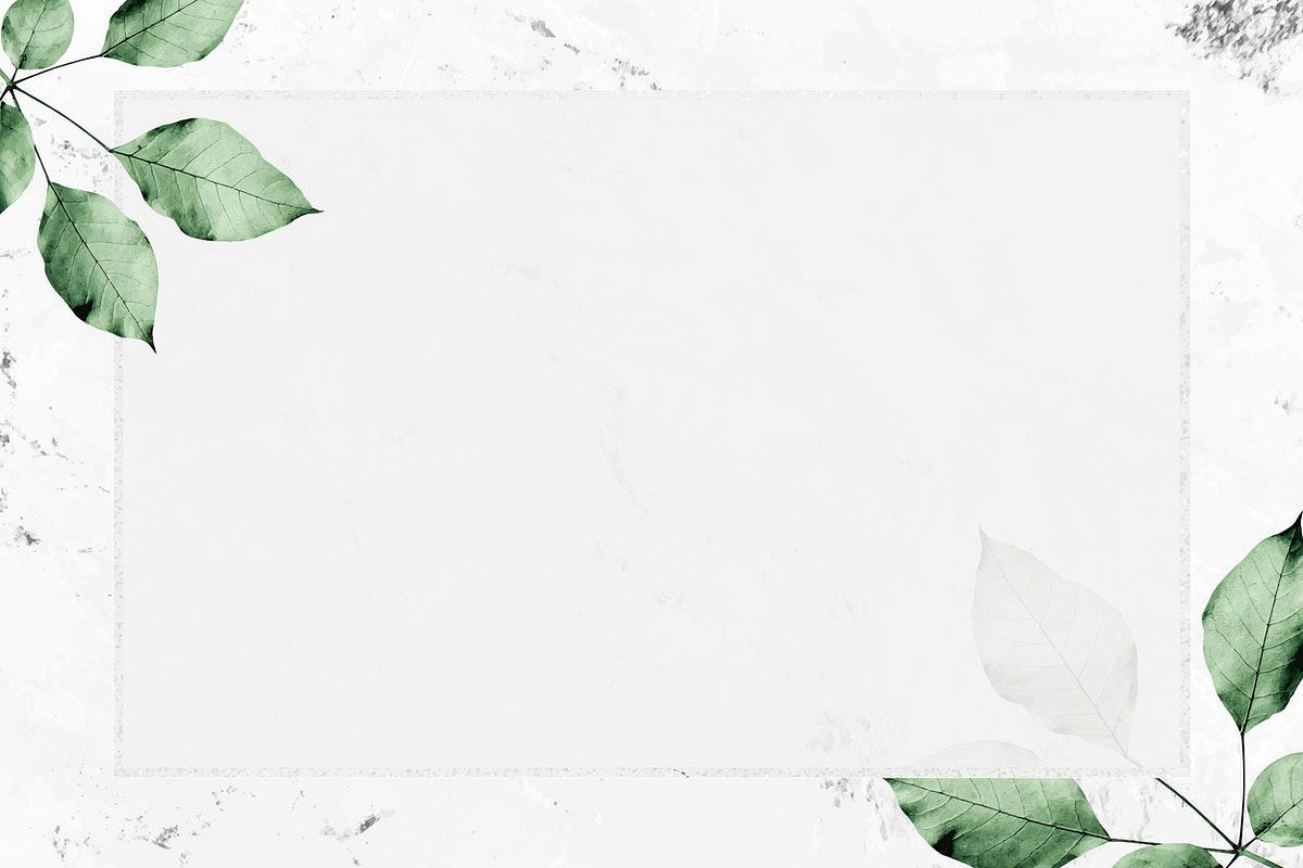 Rectangle silver frame with foliage on marble texture background vector