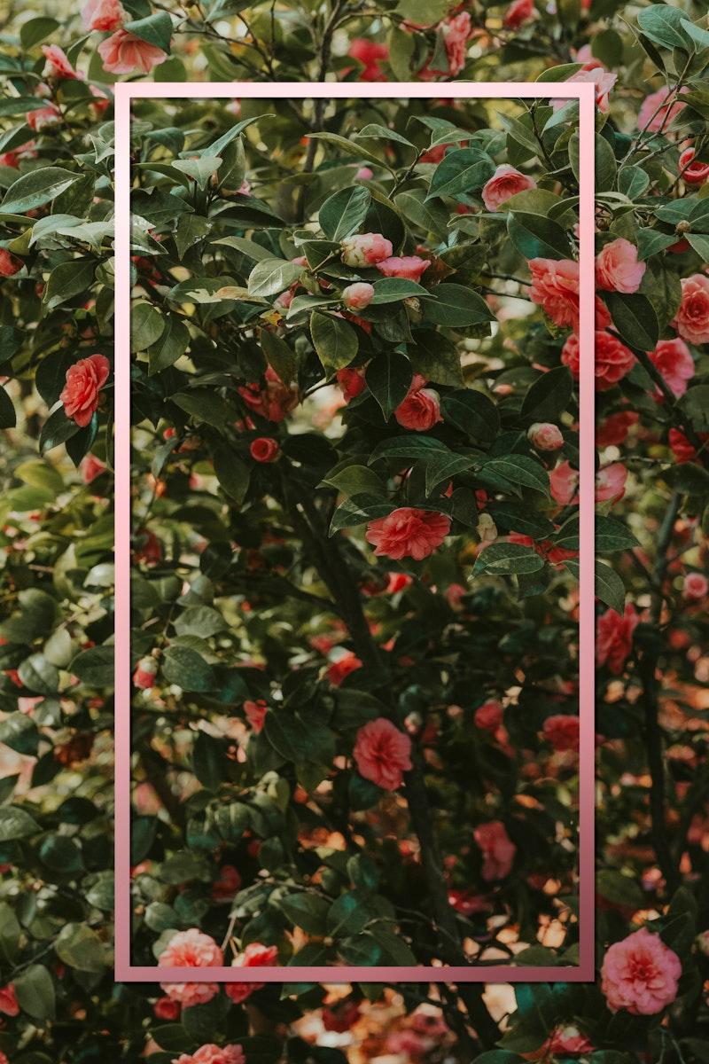 Neon red floral frame design