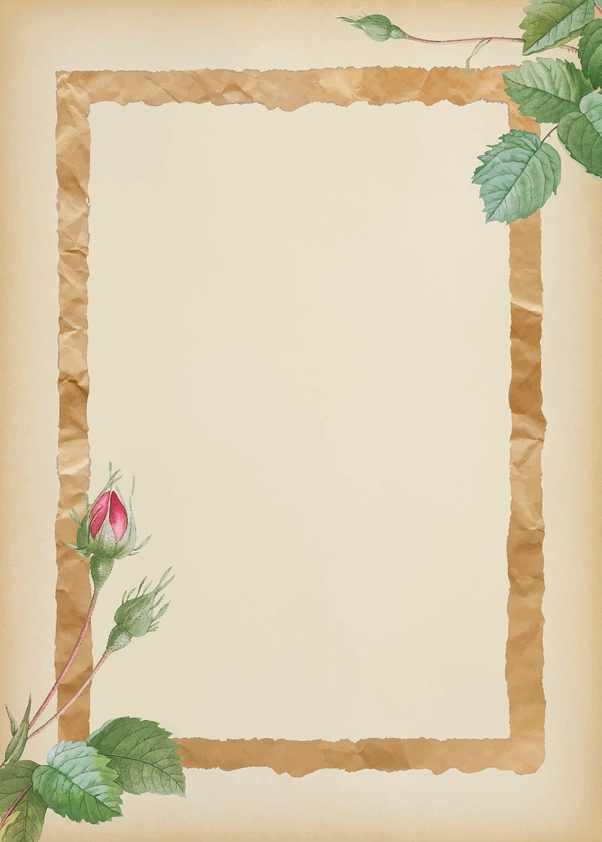 Double moss rose with crumpled brown paper frame on beige background vector