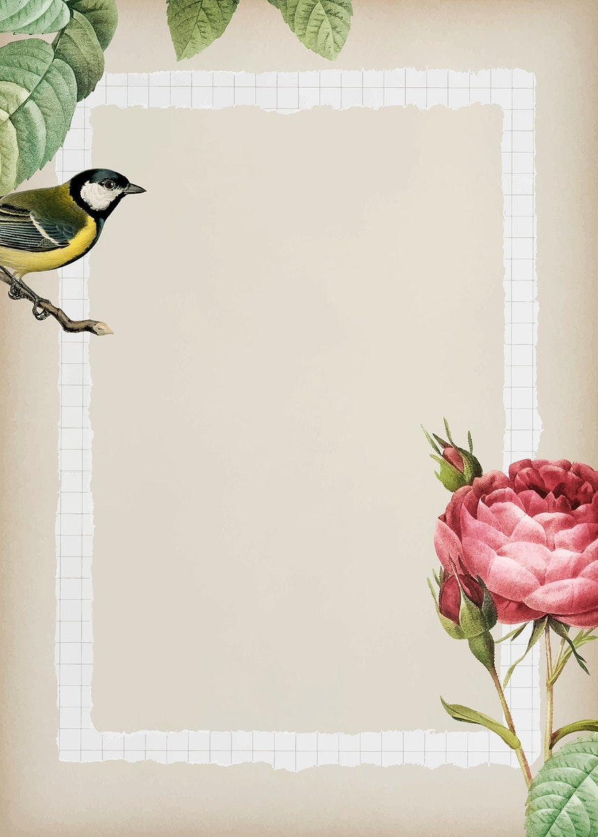 Sparkling rosebush and yellow great tit bird with a white frame on beige background vector