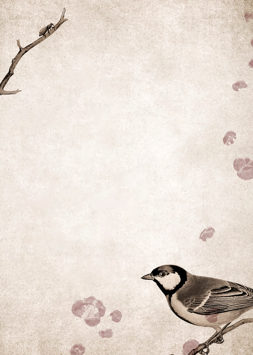 Talgoxe great tit on a grunge brown background vector