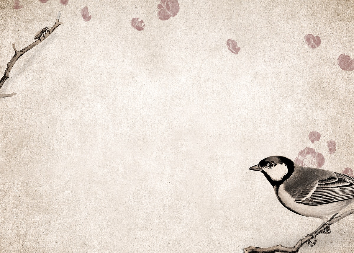 Talgoxe great tit on a grunge brown background illustration