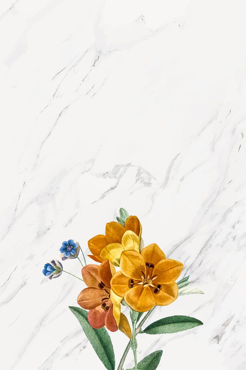 Gray marble floral frame vector