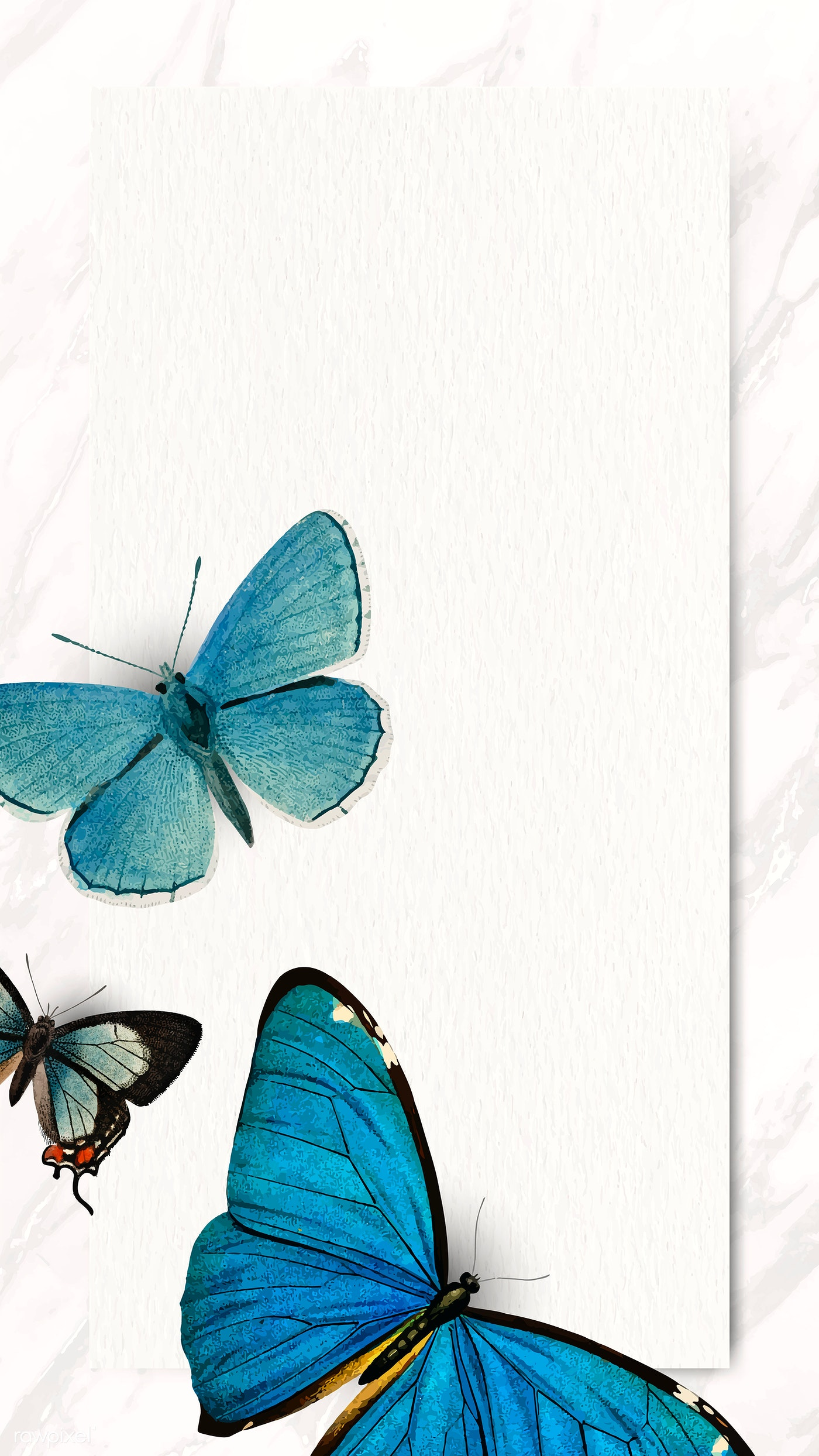 Download Premium Vector Of Blue Butterflies Patterned Mobile Phone
