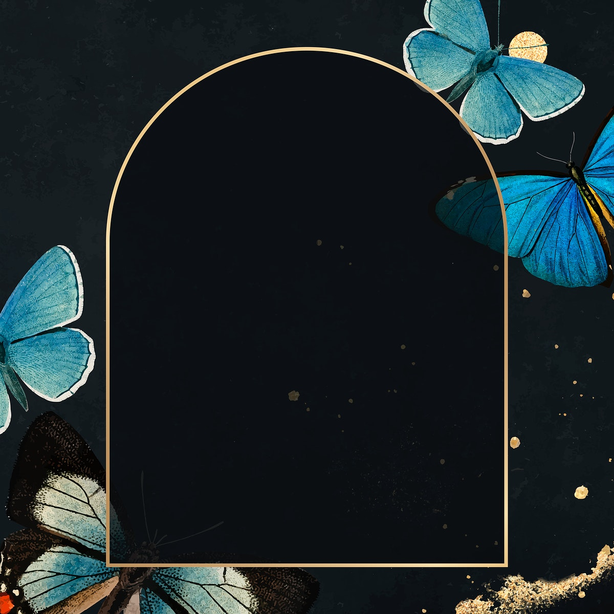 Gold frame with blue butterflies patterned background vector