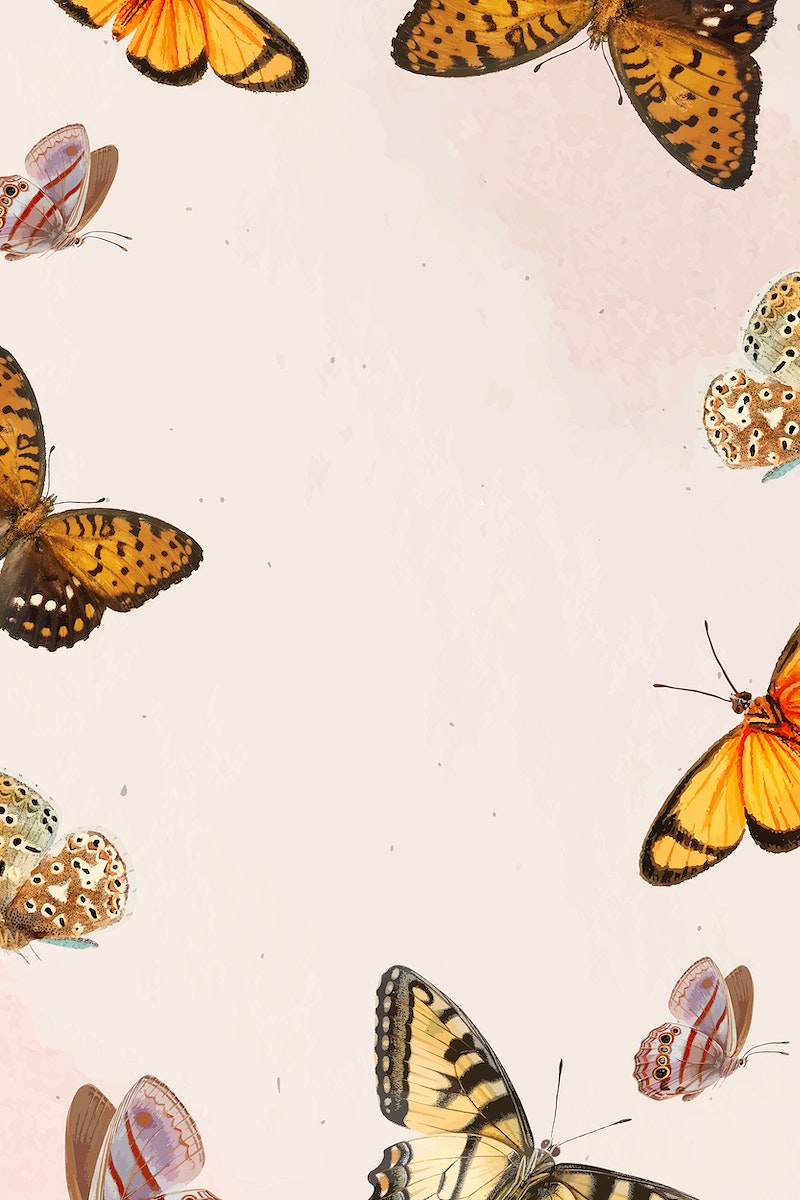 Butterfly patterned on white background vector