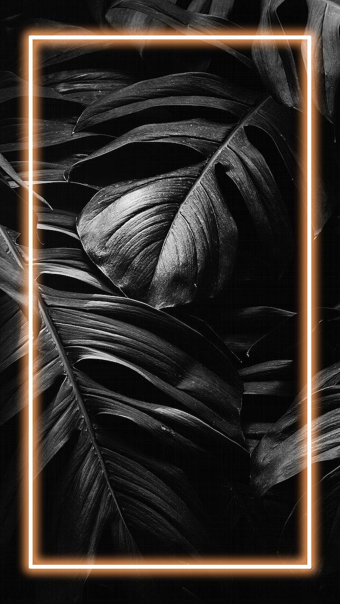 Monstera leaf mobile screen wallpaper
