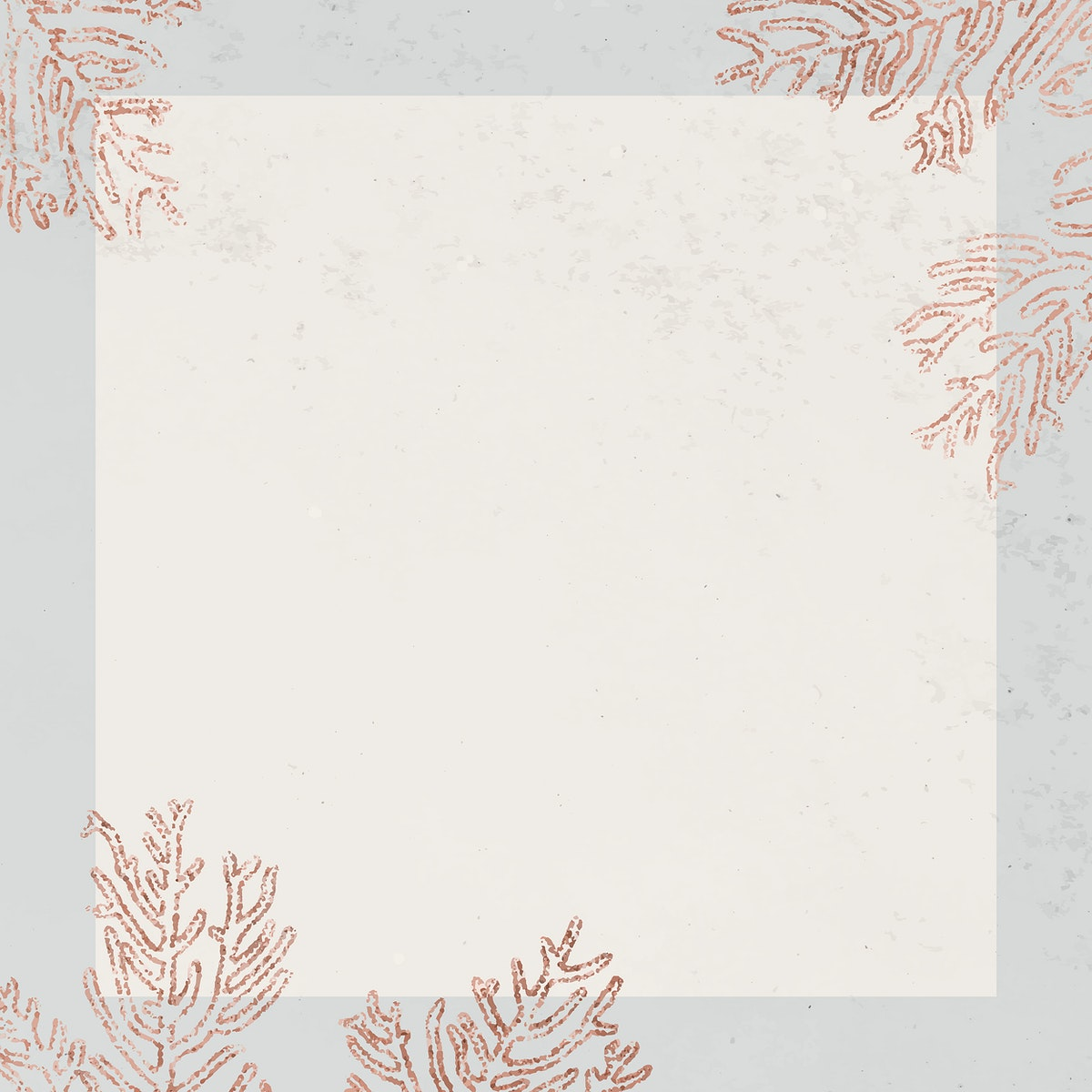 Blank square coral frame vector