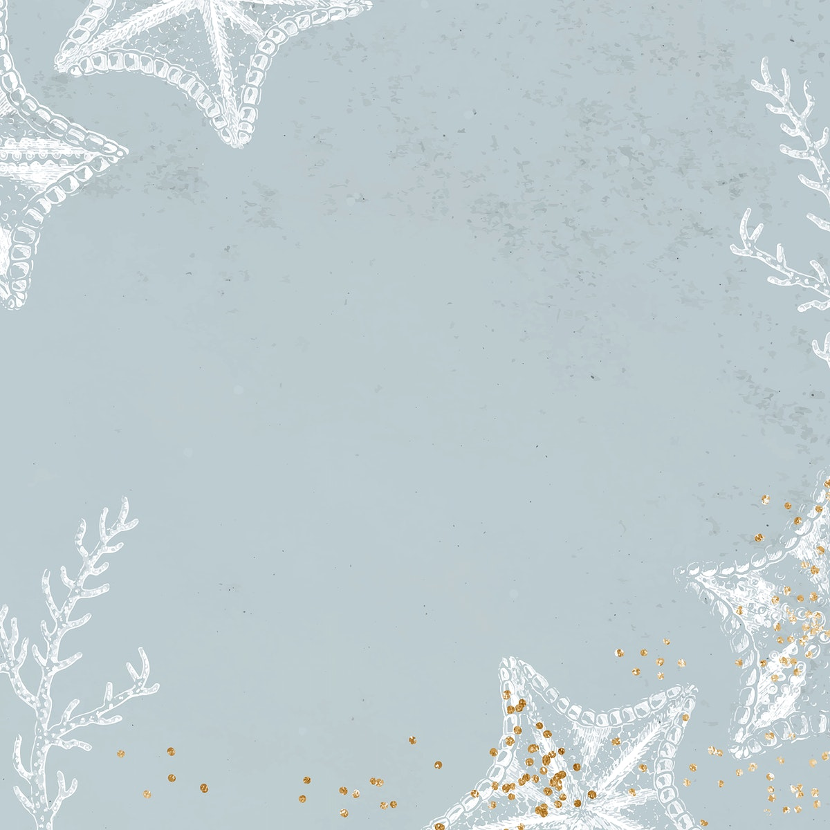 Blank starfish frame design vector