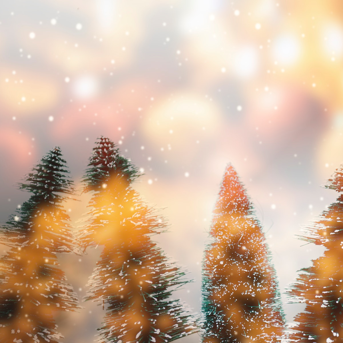 Christmas trees with design space background