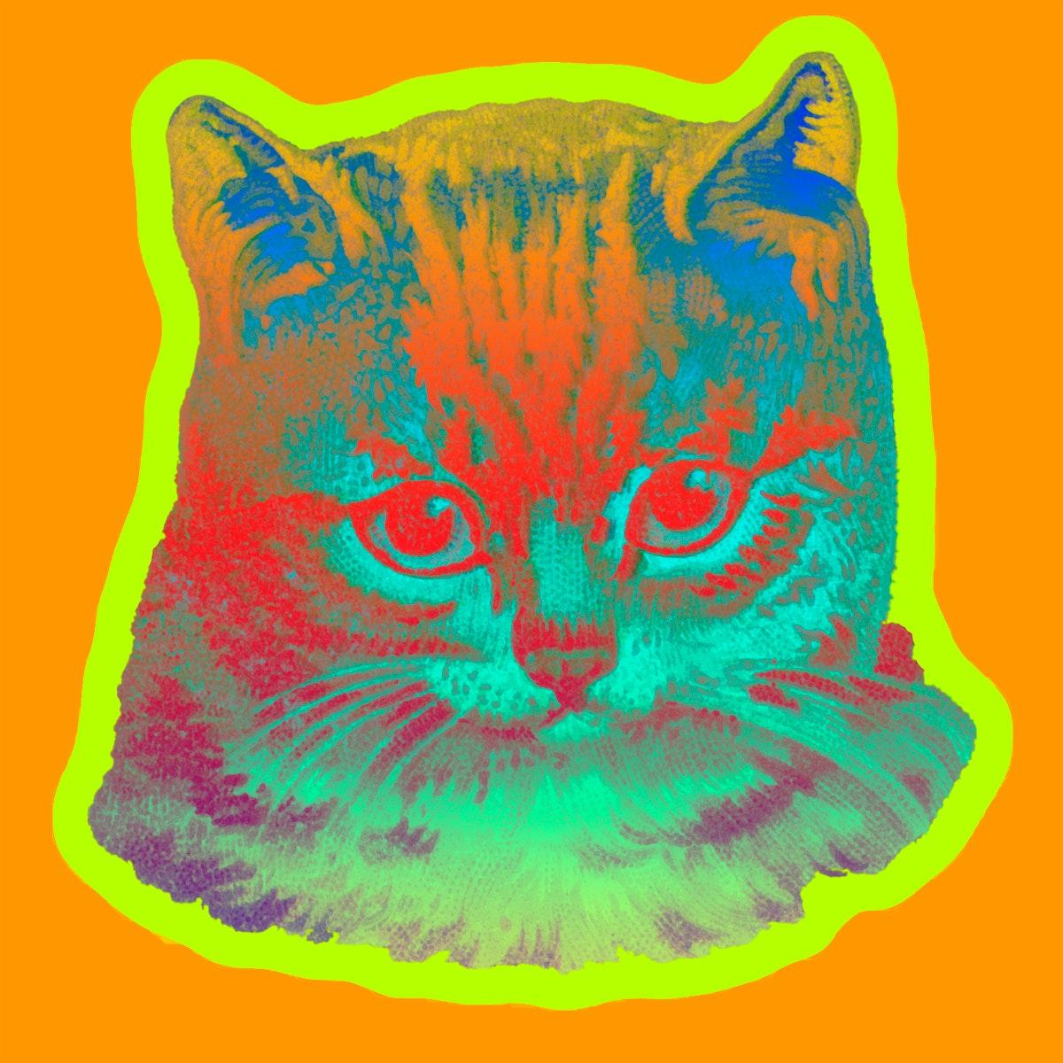 Staring cat sticker illustration