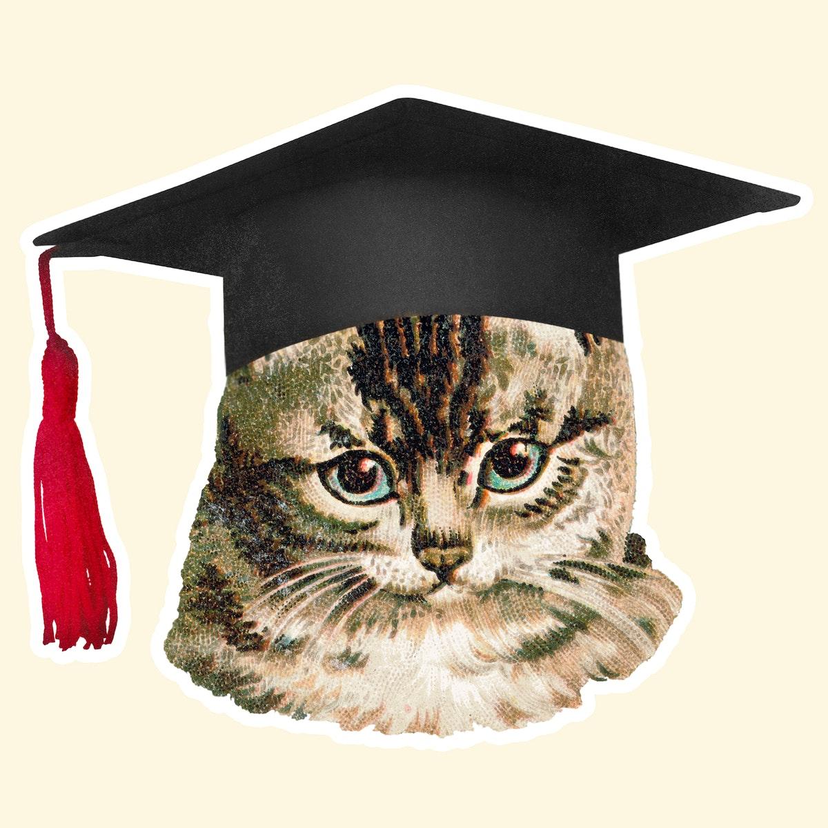 Cat in a graduation cap sticker illustration