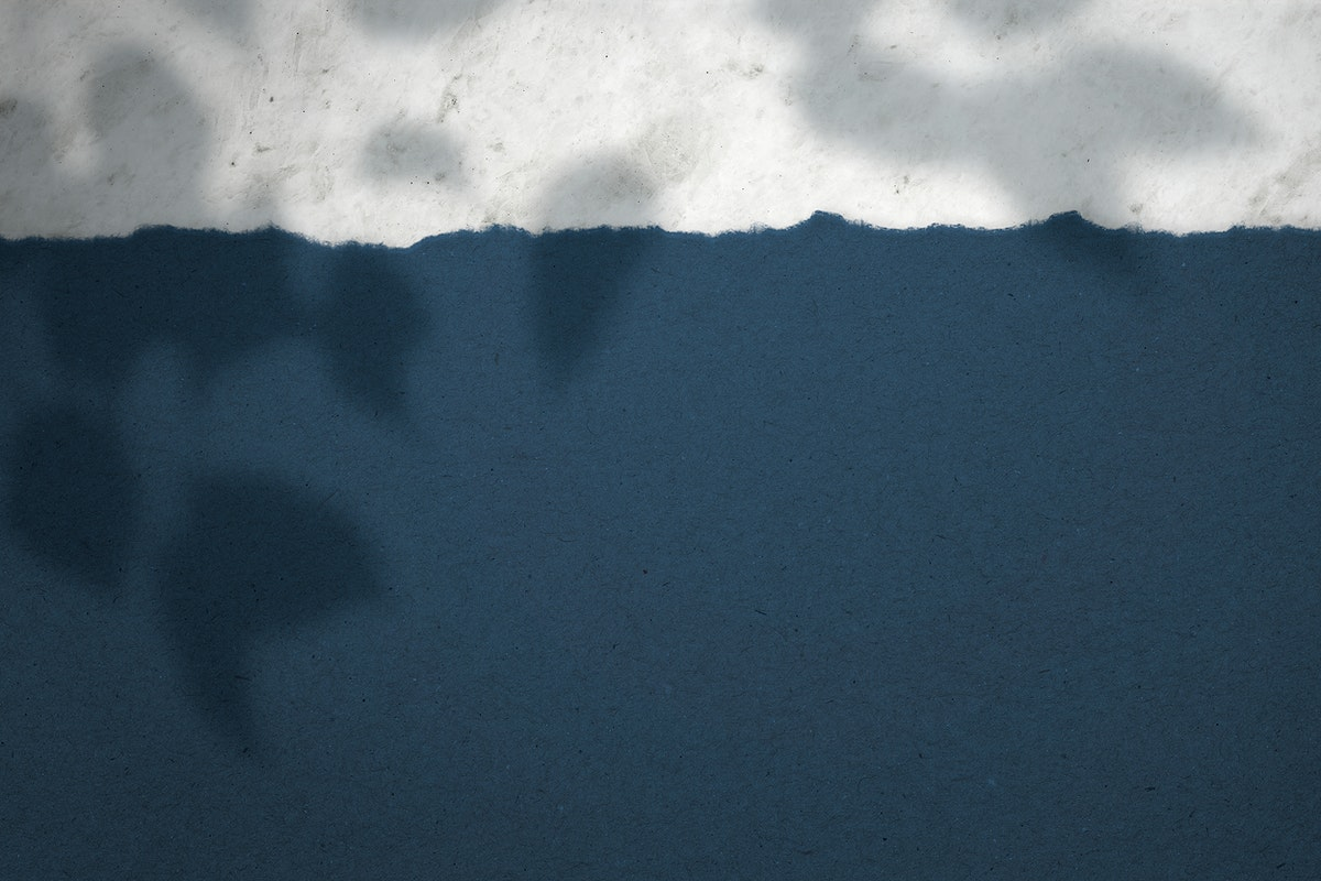 Gray and blue paper with shadows of leaves background