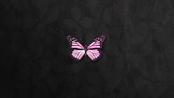 Pink Holographic Butterfly On A Black Background Royalty Free Illustration 2367517