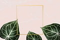 Square golden nature frame on a pink background