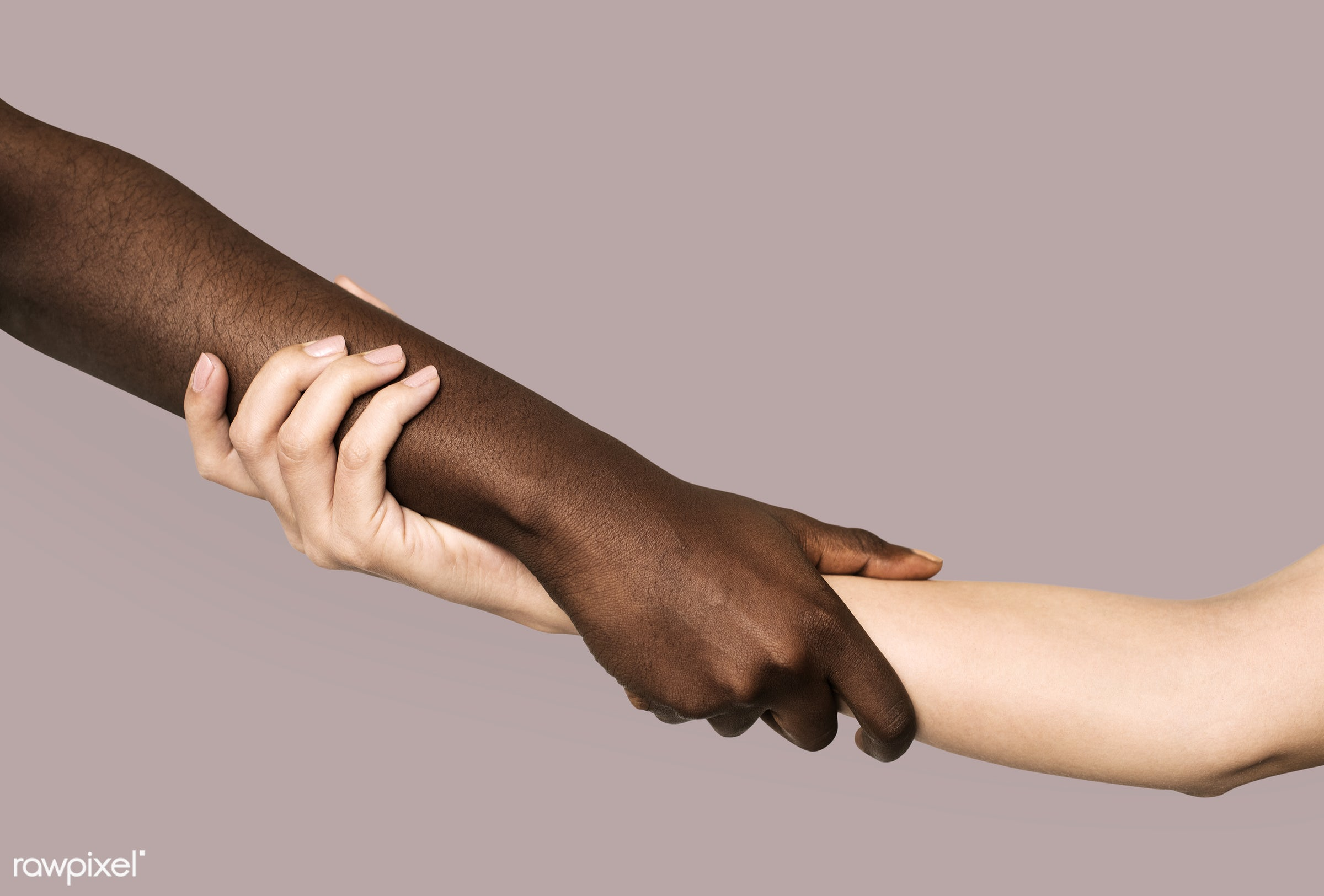 Hands together isolated - africa, african, african american, african descent, american, background, beige background, black...