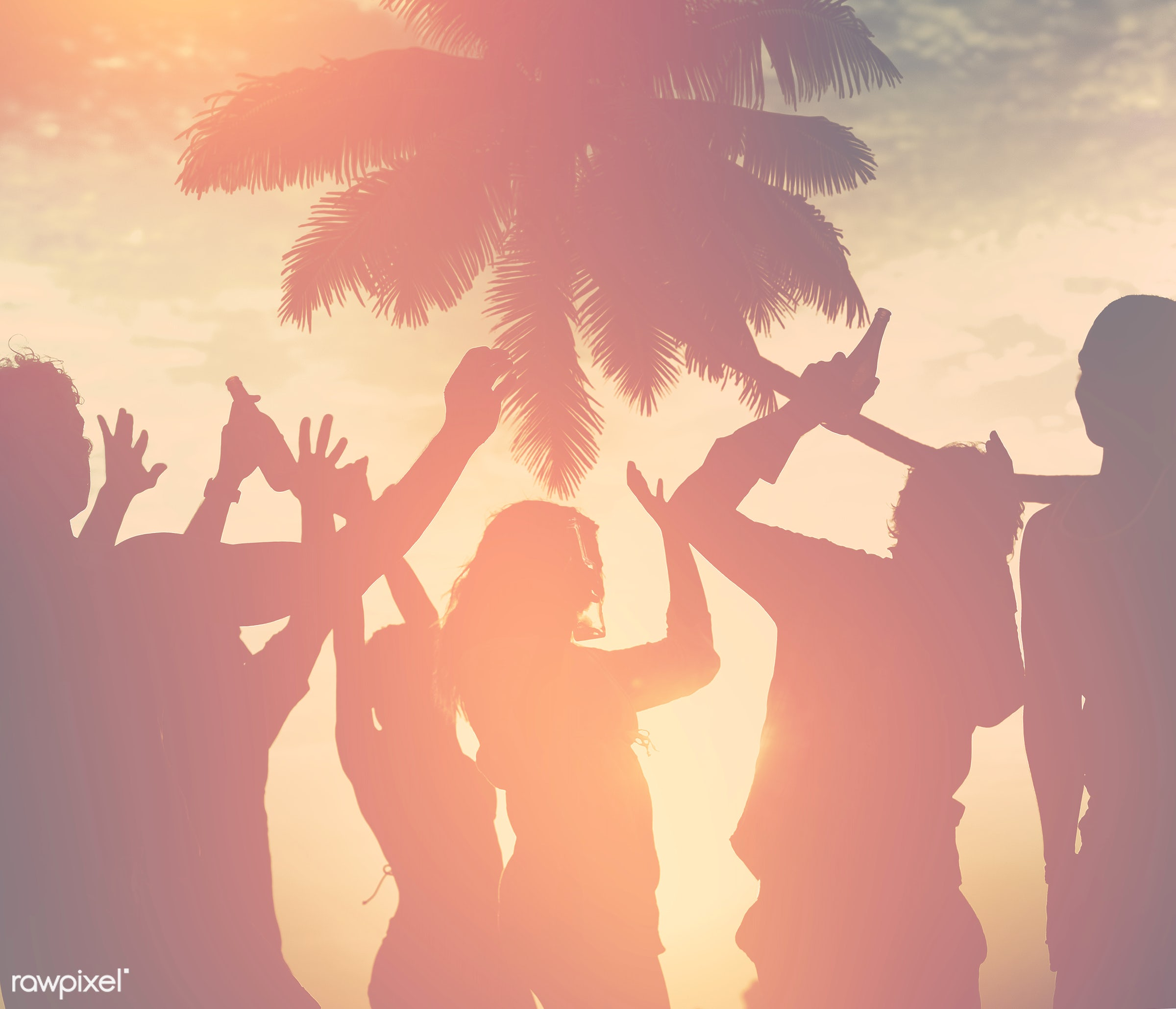 A group of diverse people is having fun at the beach - african american, african descent, beach, coast, dancing, diverse,...