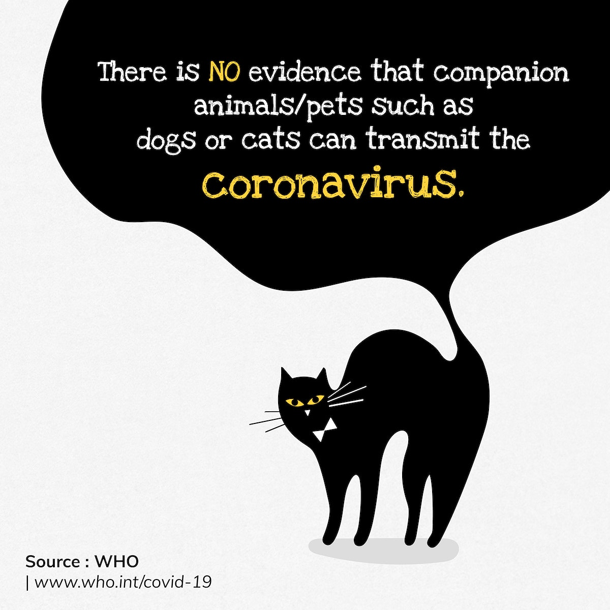 Pets can not transmit coronavirus social template source WHO vector