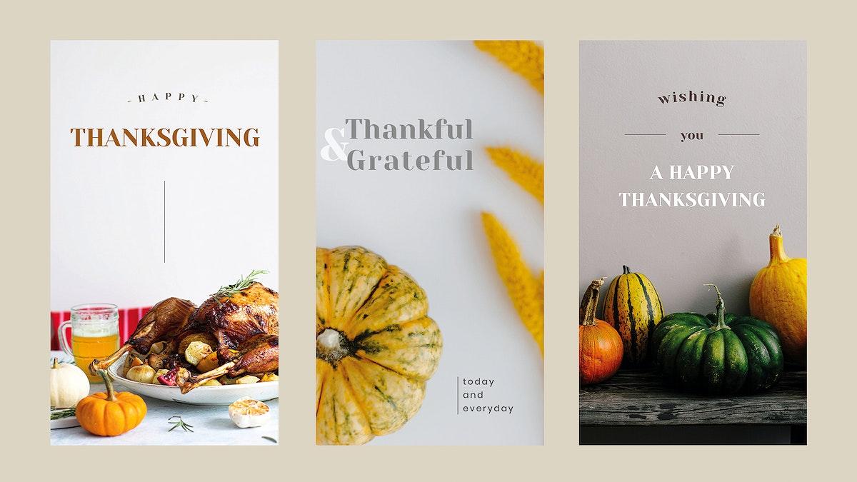 Thanksgiving greeting vector editable template set for social media stories