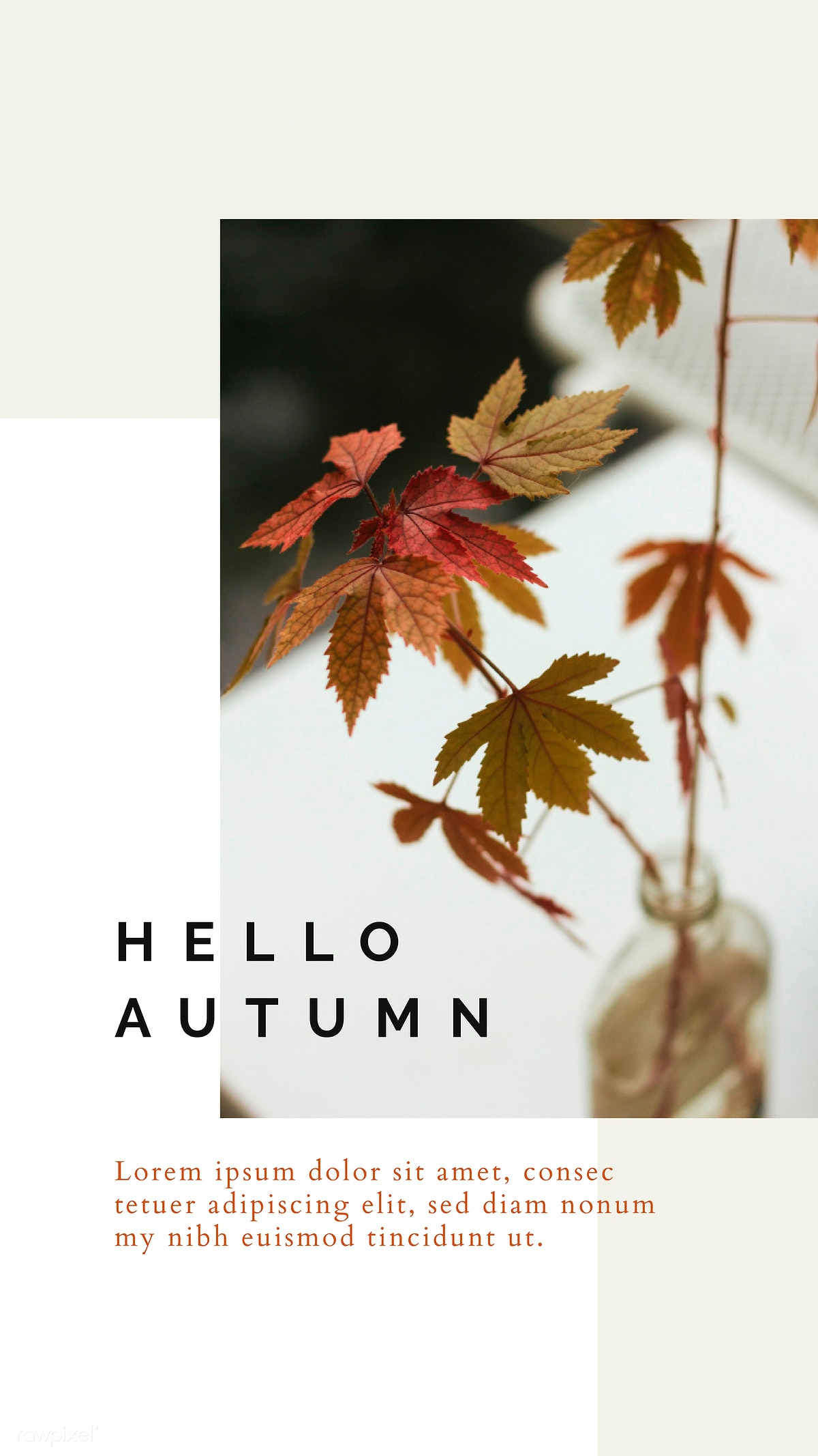 Download premium vector of Autumn color tone social media blog template