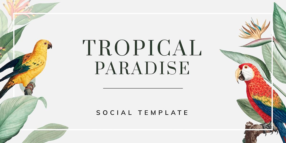Tropical social banner template vector