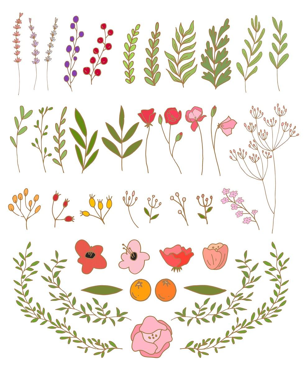 Vector of floral banner set