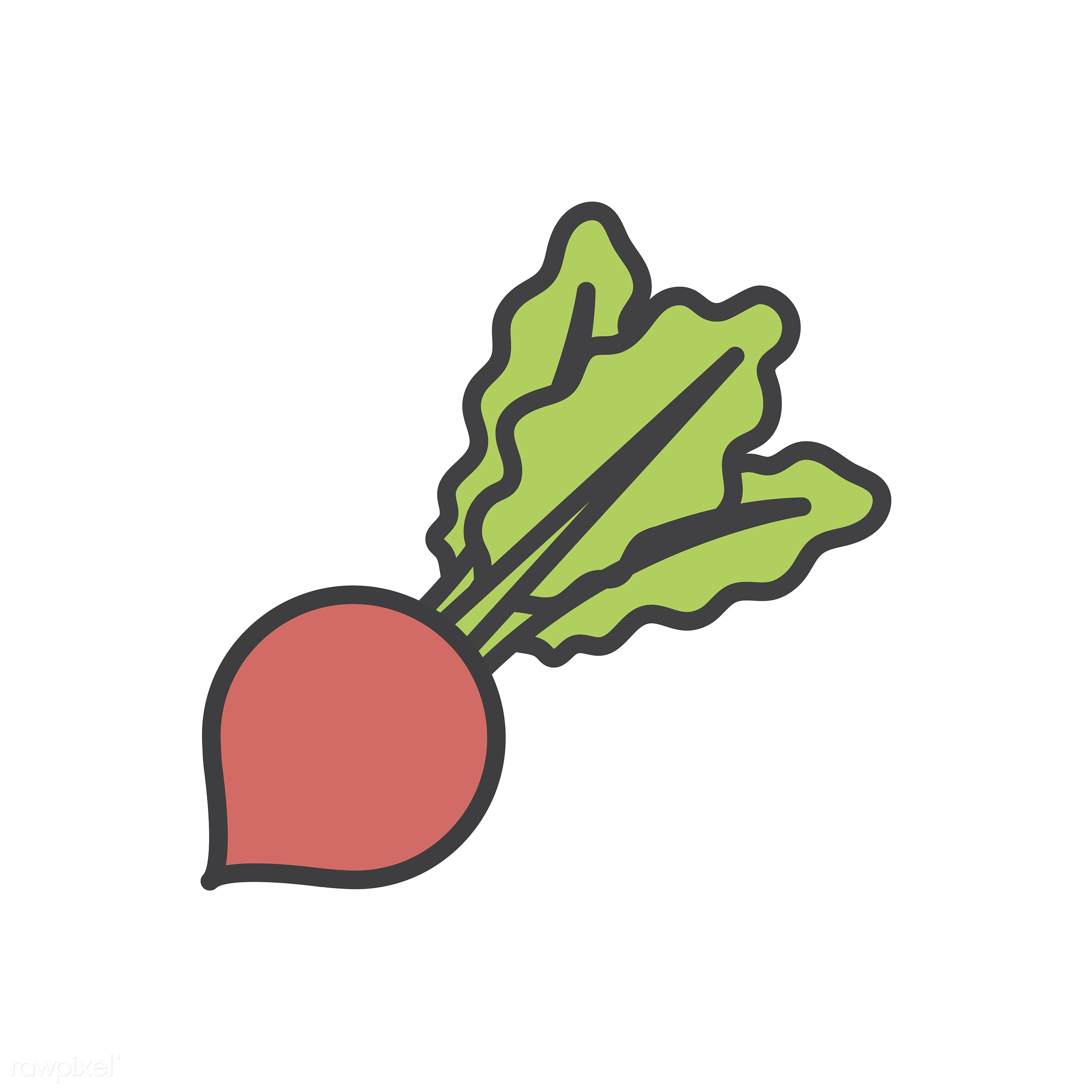 food, abode, adults, comfort, cozy, dwelling, home, homely, house, household, living, pad, radish, residence, vector,...