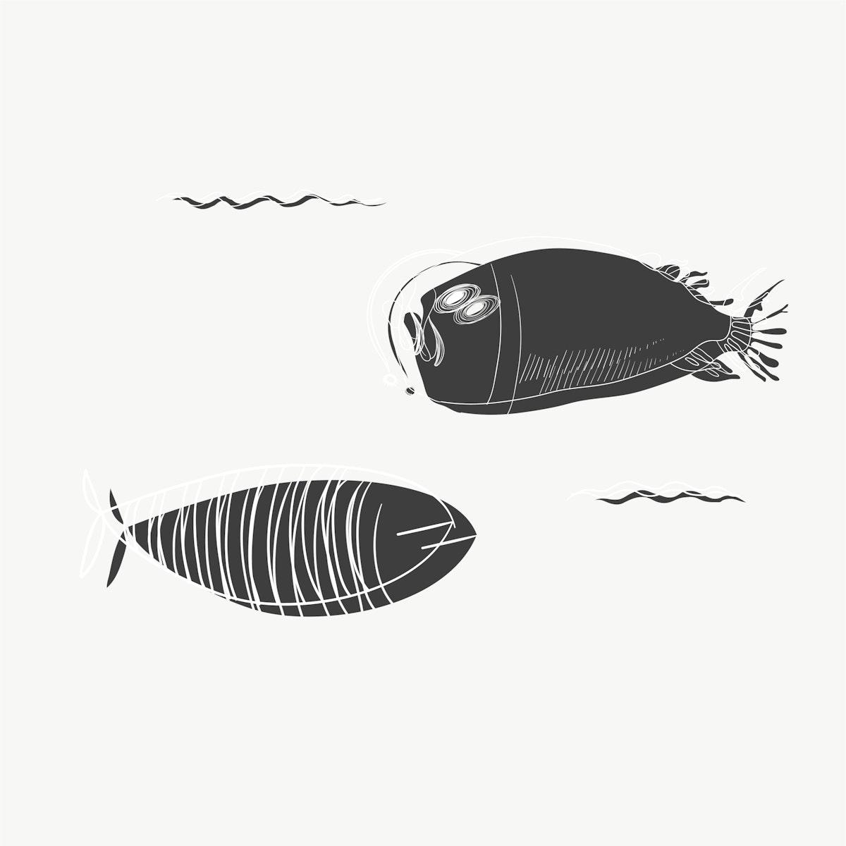 Fish drawing vector