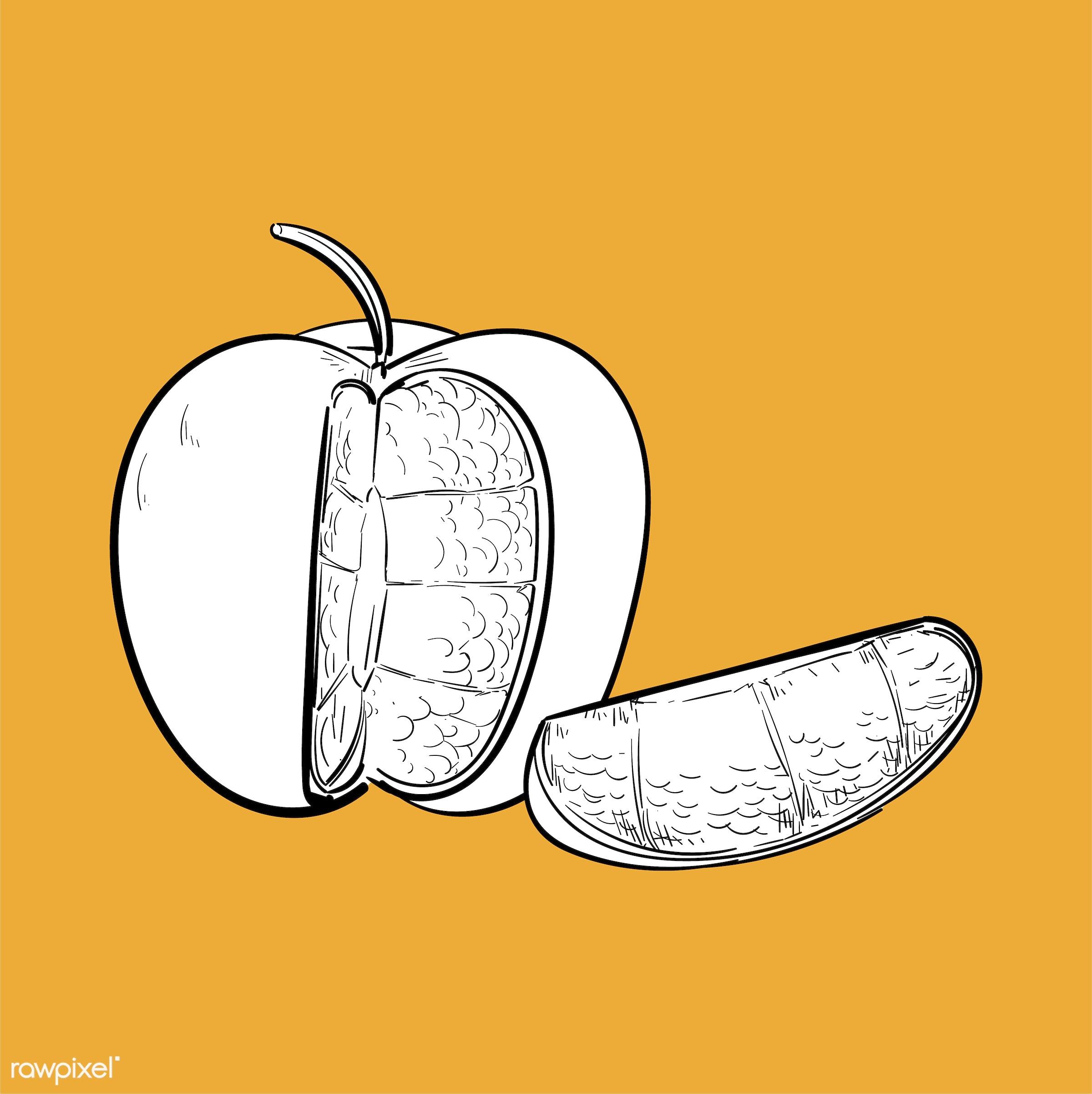 Hand drawing illustration of individuality concept - apple, art, artwork, contrast, creative, creativity, cut, design,...