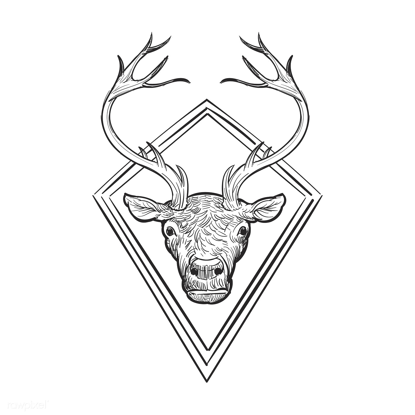 Hand drawn deer antler isolated - ID: 410830