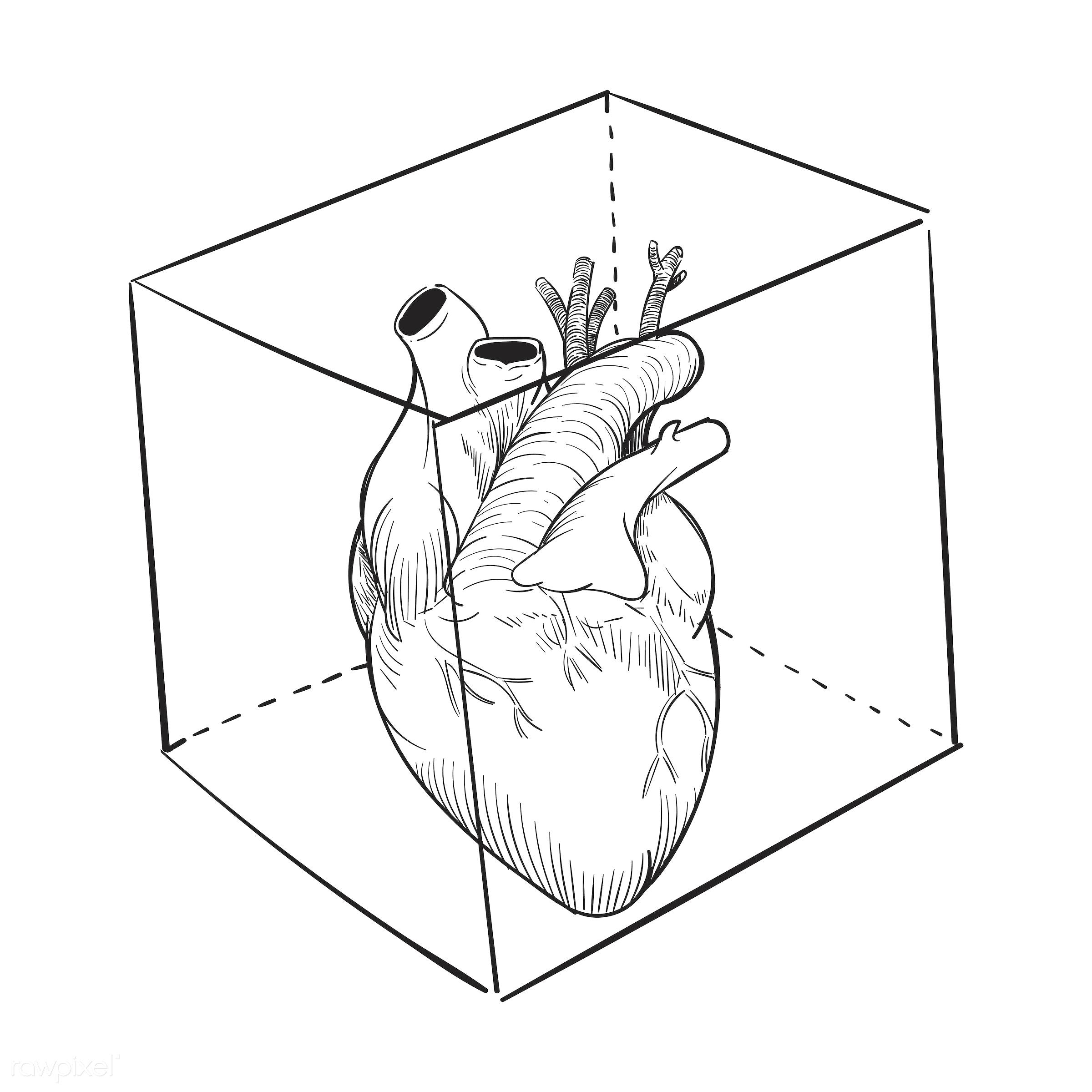 Hand drawing illustration of captived heart - artwork, captive, creativity, design, draw, drawing, drawn, emotion,...