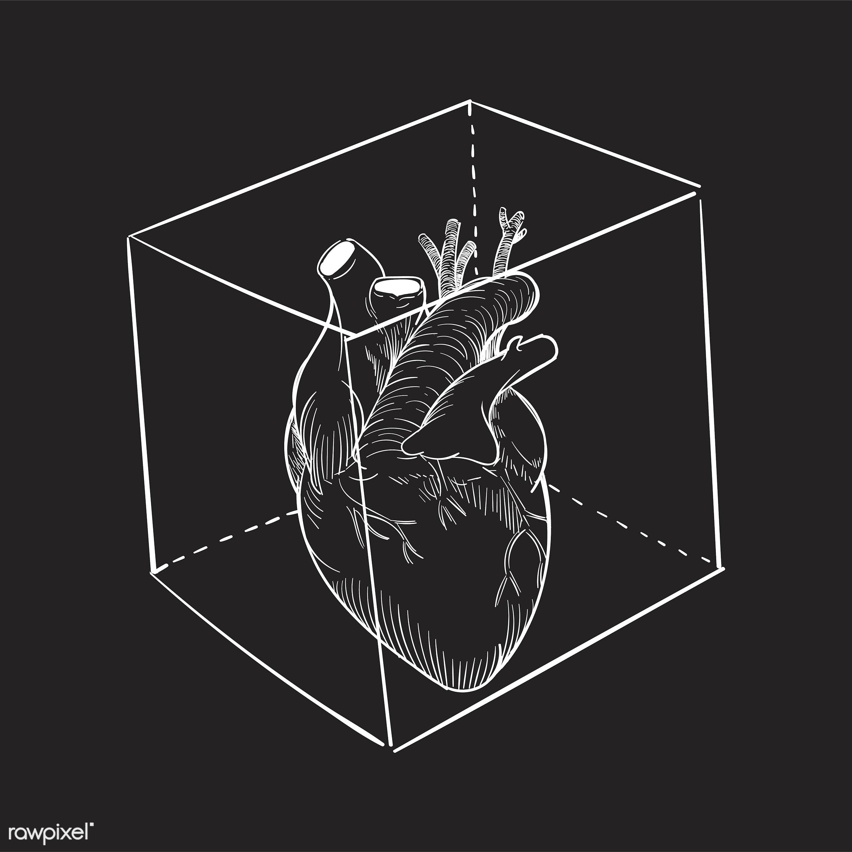 Hand drawing illustration of captived heart - heart, love, vector, artwork, captive, creativity, design, draw, drawing,...