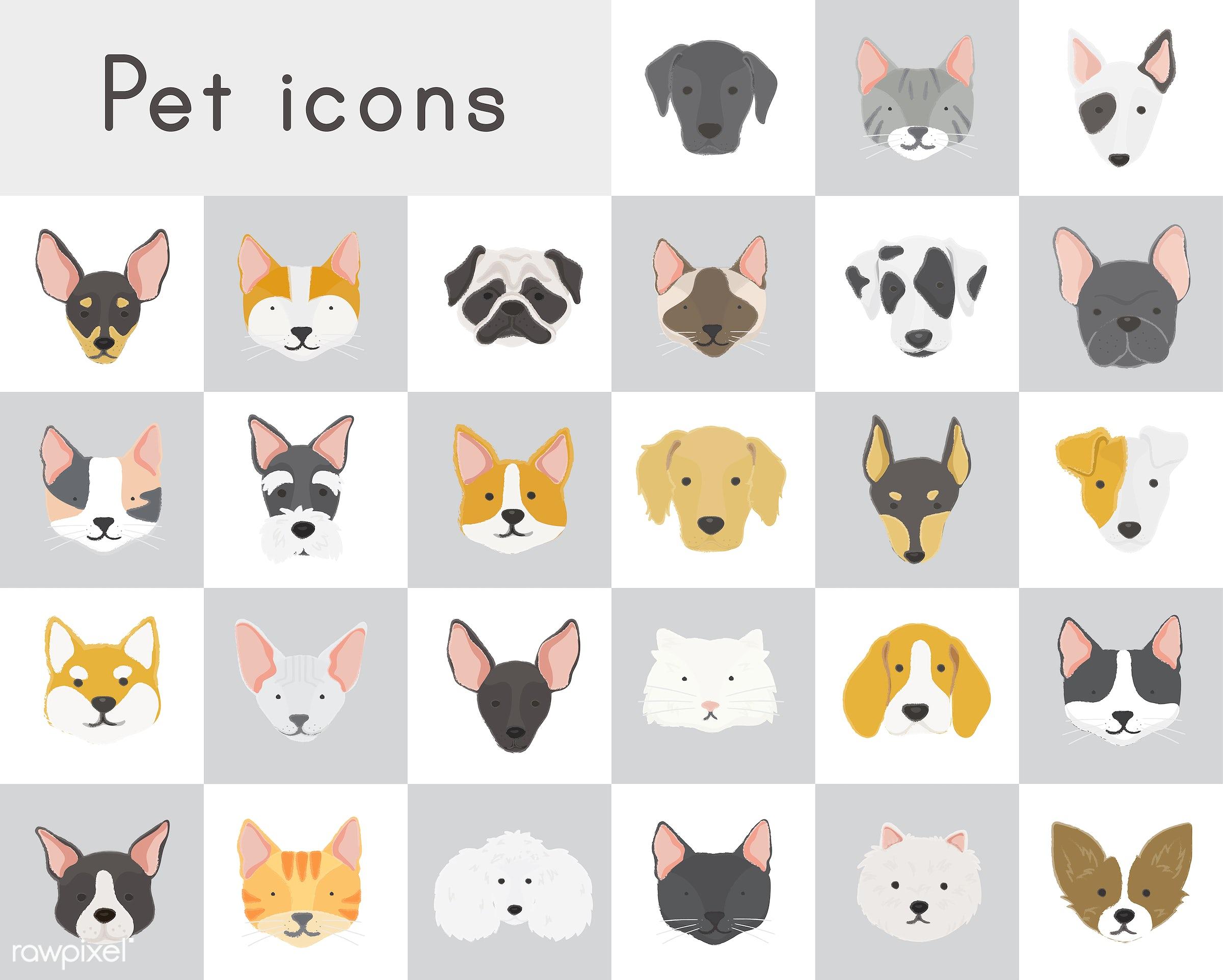 dog, corgi, icon, american eskimo, animal, beagle, boston terrier, breed, bull terrier, bulldog, chihuahua, collection,...