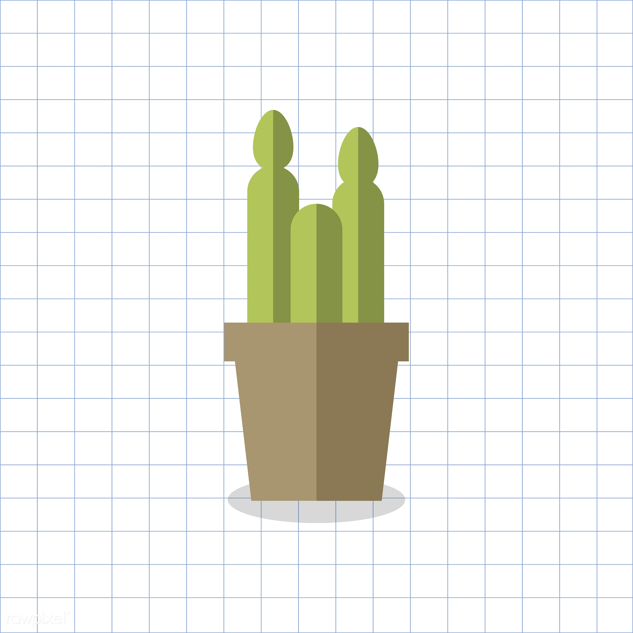 vector, graphic, illustration, icon, symbol, colorful, cute, plant, tree, nature, cactus, cacti, planted, pot