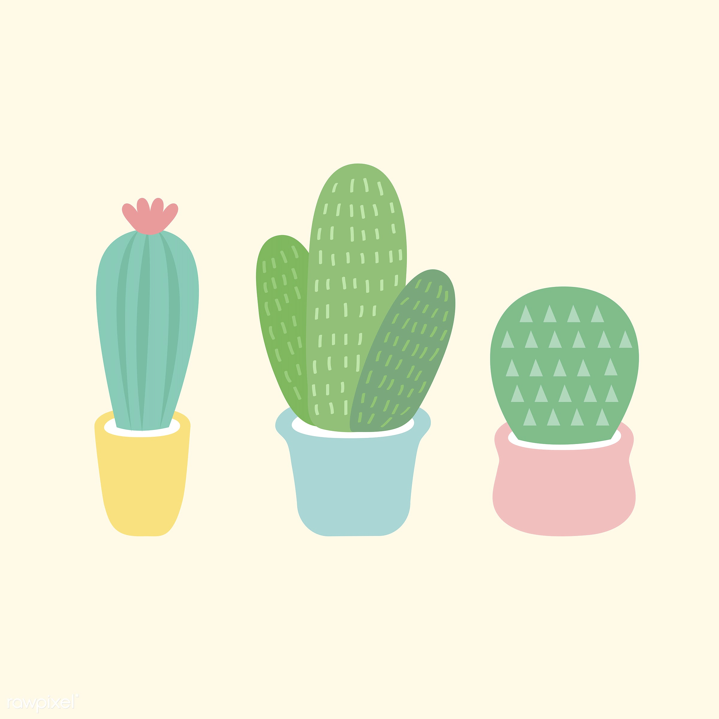 Three small cacti vector - vector, illustration, graphic, cute, sweet, girly, pastel, cactus, cacti, plant