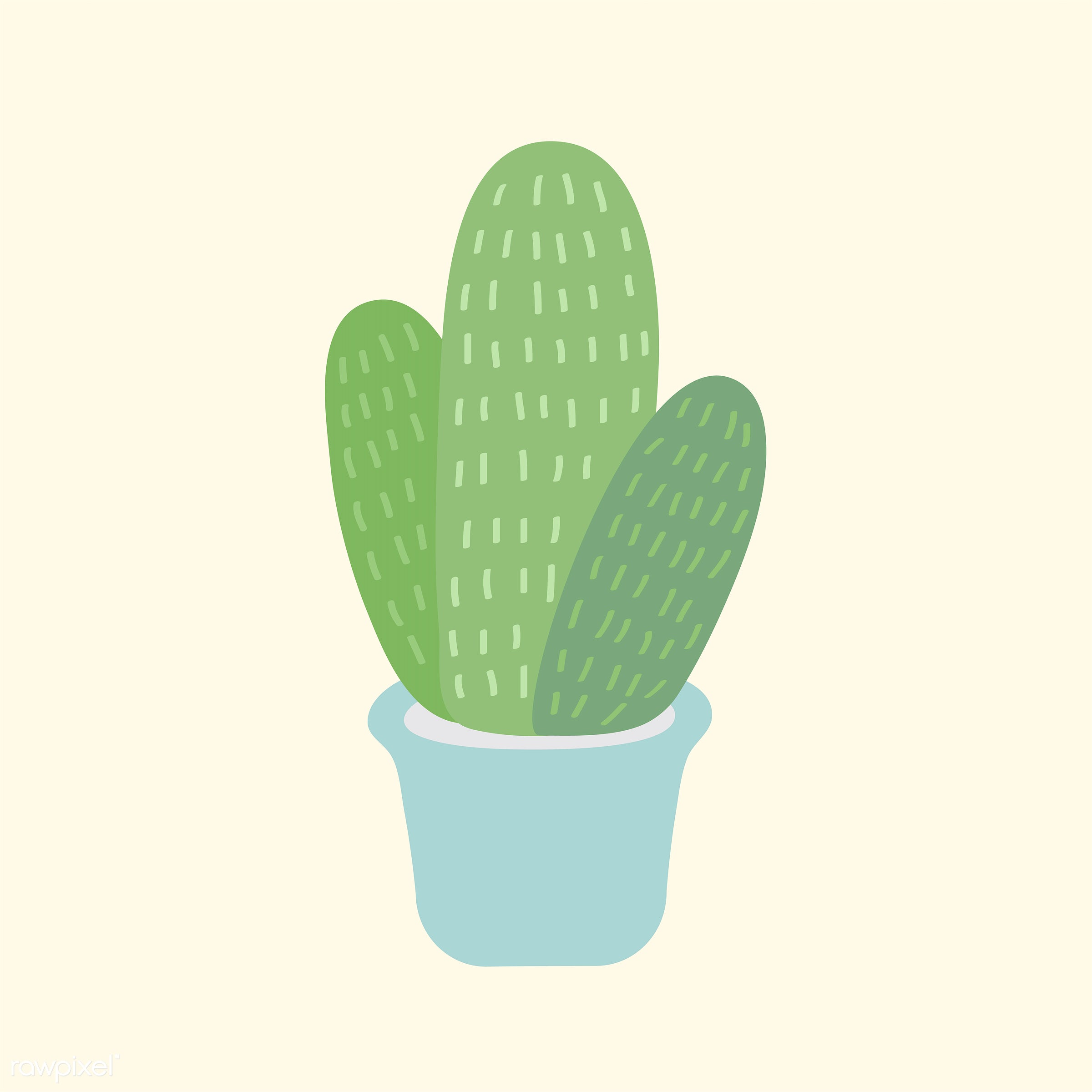 vector, illustration, graphic, cute, sweet, girly, pastel, cactus, cacti, plant