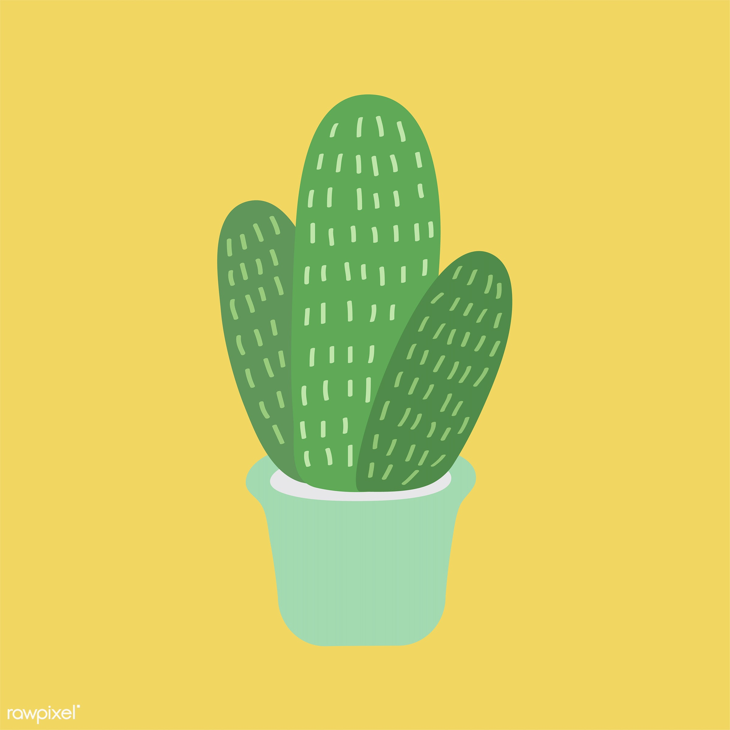 Collection of technology vectors - vector, illustration, graphic, cute, sweet, girly, pastel, cactus, cacti, plant