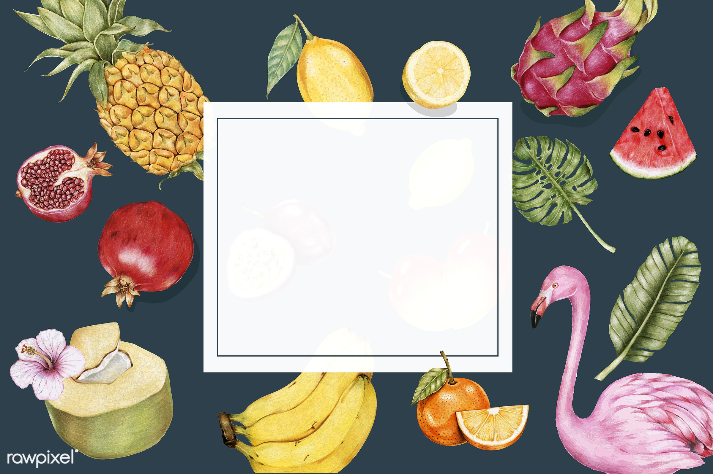 Illustration of tropical fruits watercolor style - agriculture, drawing, eat, farm, food, fresh, fruits, graphic, healthcare...