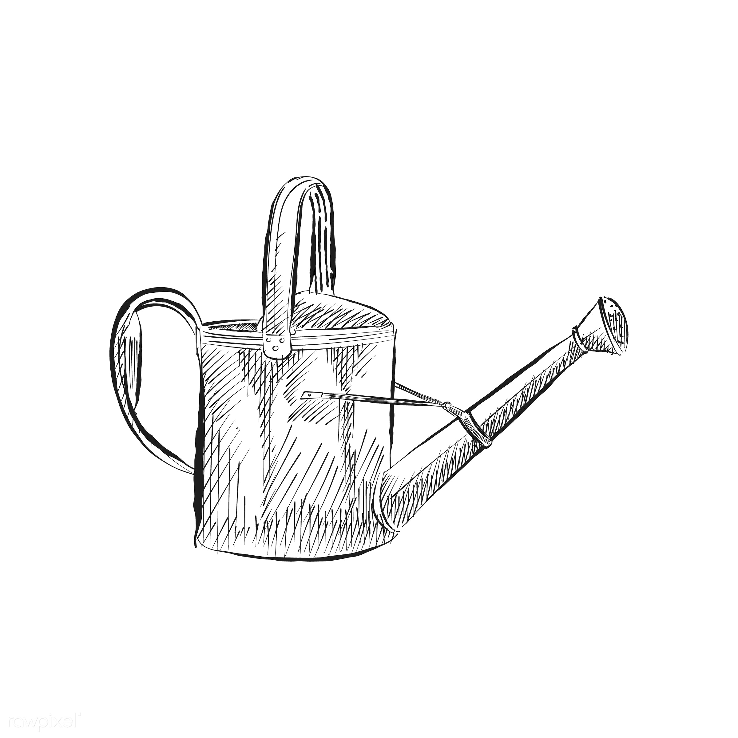 Vintage illustration of a watering can - antique, black, design, drawing, equipment, garden, gardening, gardening tool,...
