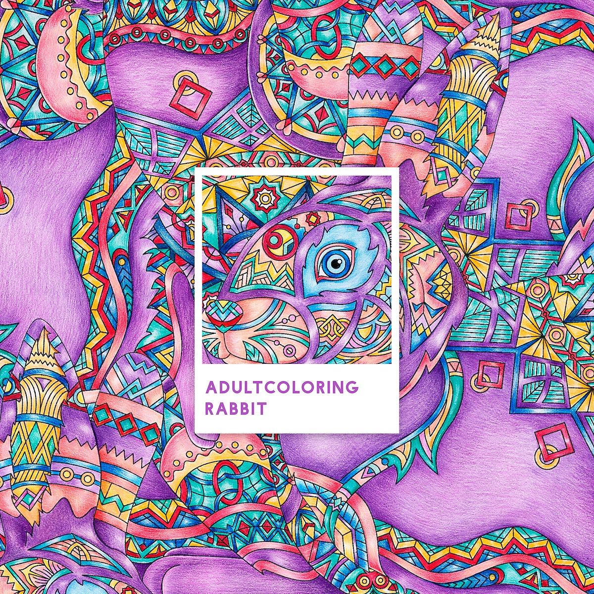 Purple rabbit adult coloring illustration