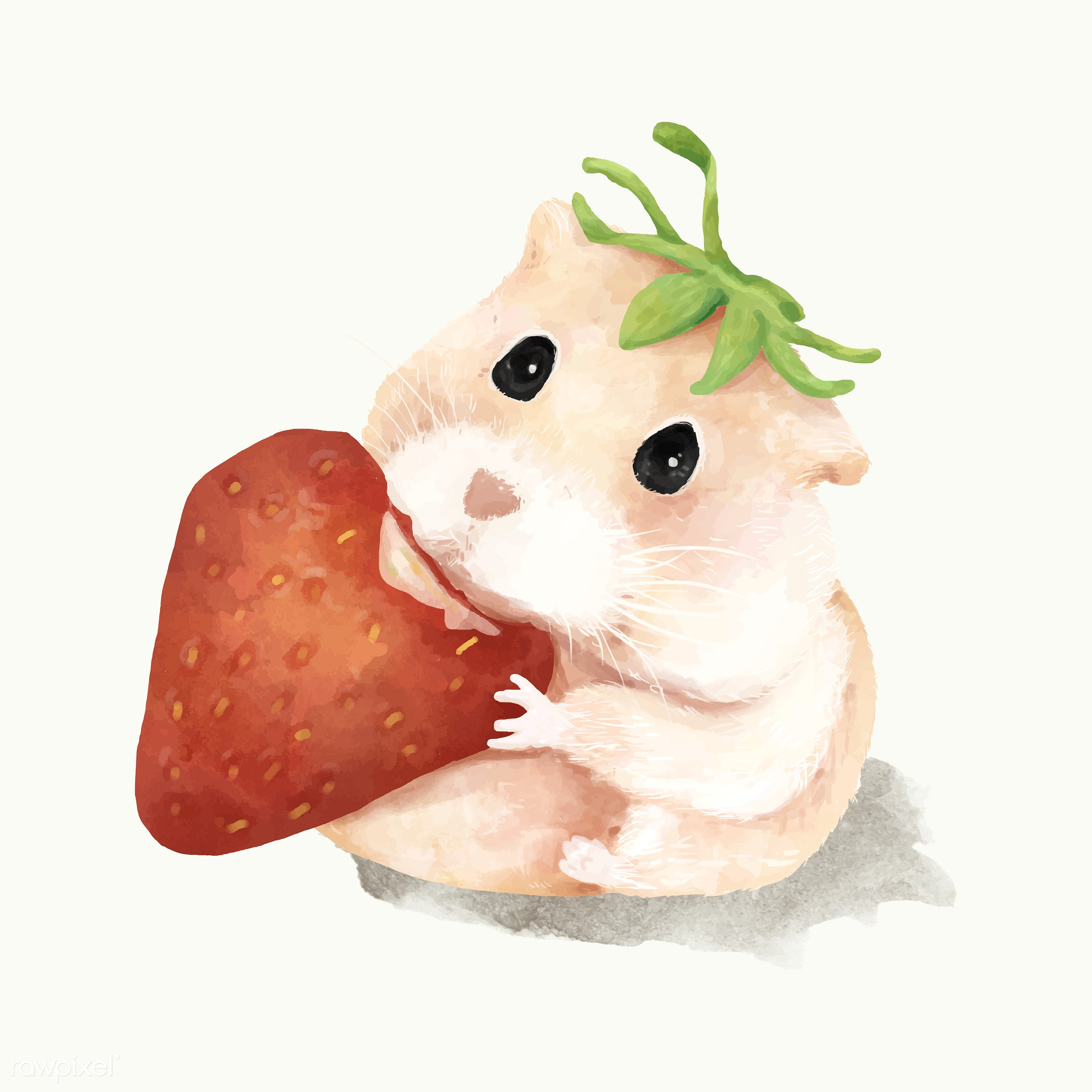 Illustration of hamster - mammal, animals, baby, cheerful, child, color, colored, creature, cute, fun, graphic, hamster,...