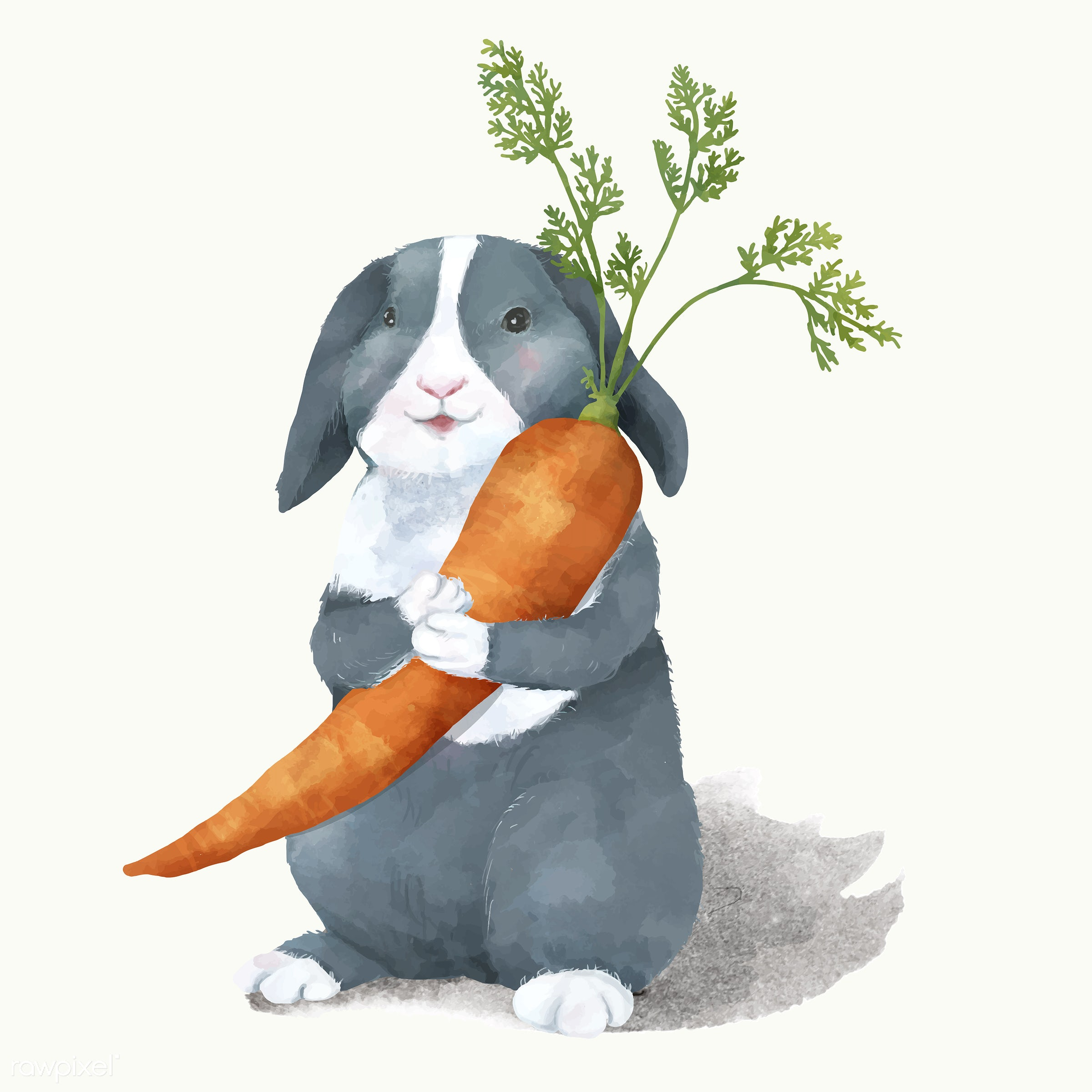 Illustration of a rabbit - animals, baby, cheerful, child, color, colored, creature, cute, fun, graphic, happy, illustration...