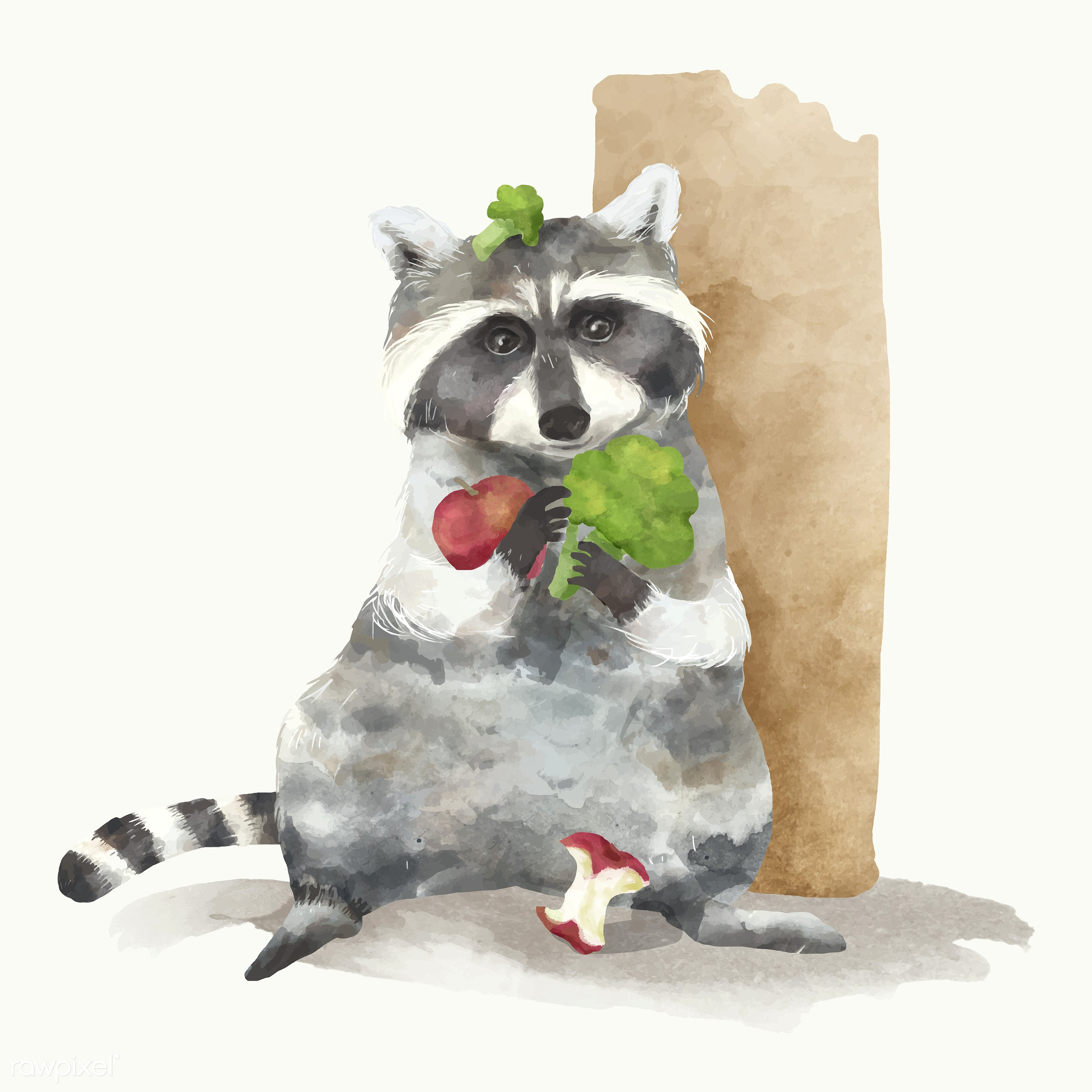 Illustration of a raccoon - animals, baby, cheerful, child, color, colored, creature, cute, fun, graphic, happy,...
