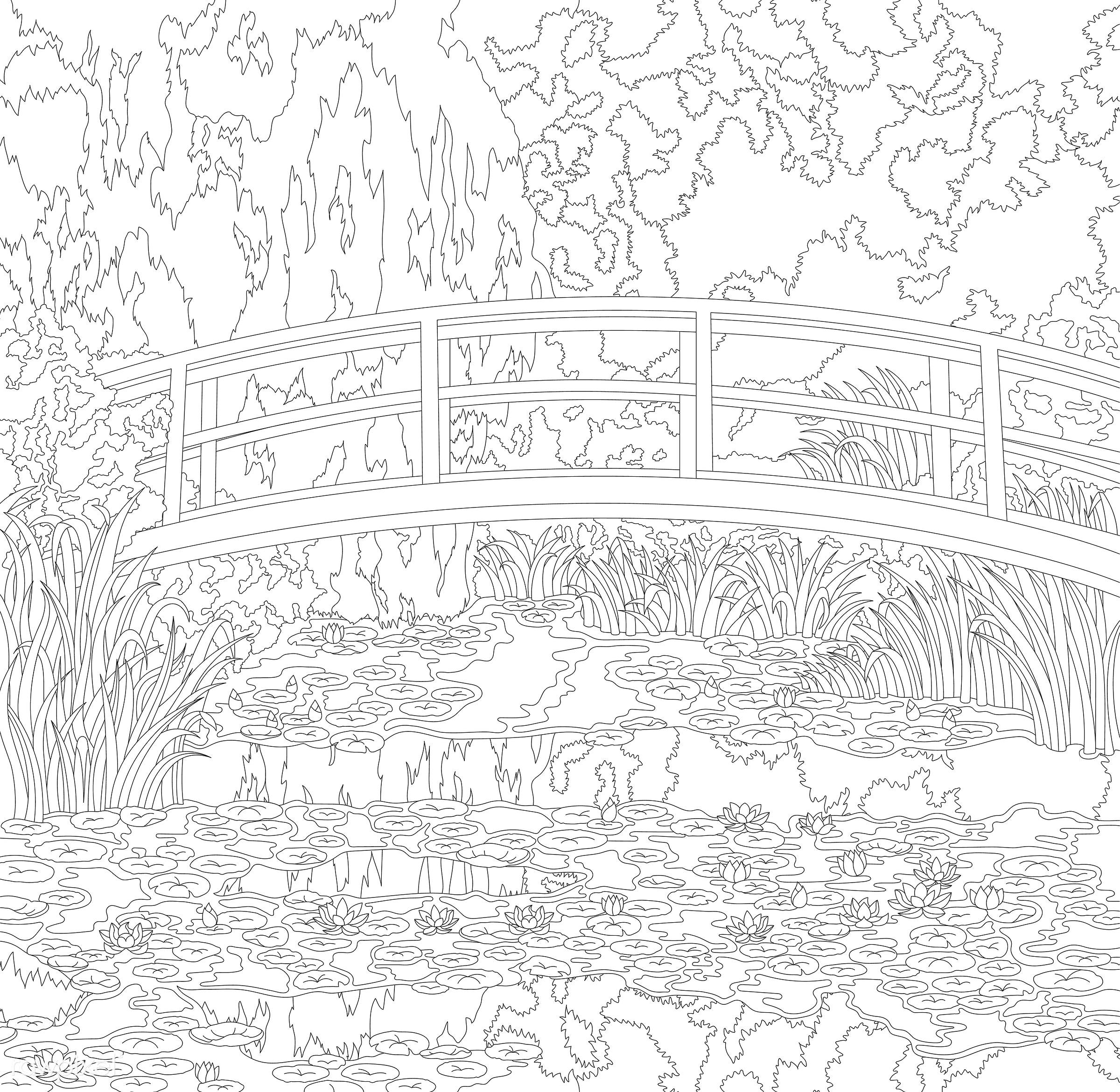 The Water Lily Pond (1899) by Claude Monet: adult coloring
