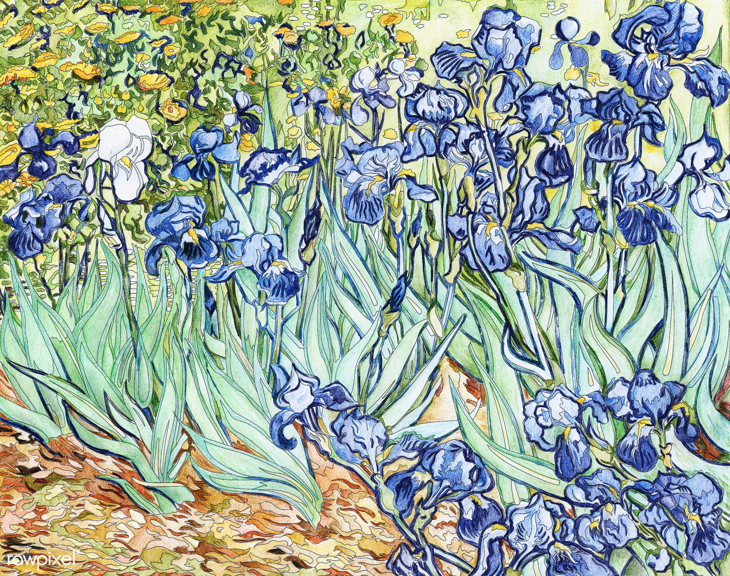 Irises (1889) by Vincent van Gogh adult coloring page - ID: 416068