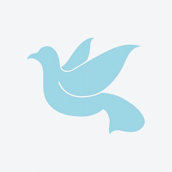 Dove Symbol Of Peace Illustration Id 444708