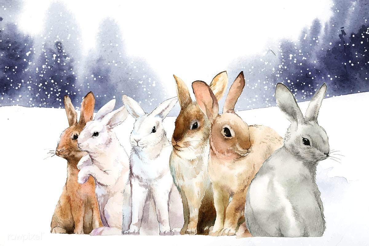 Wild rabbits in the winter snow painted by wa   | Free stock