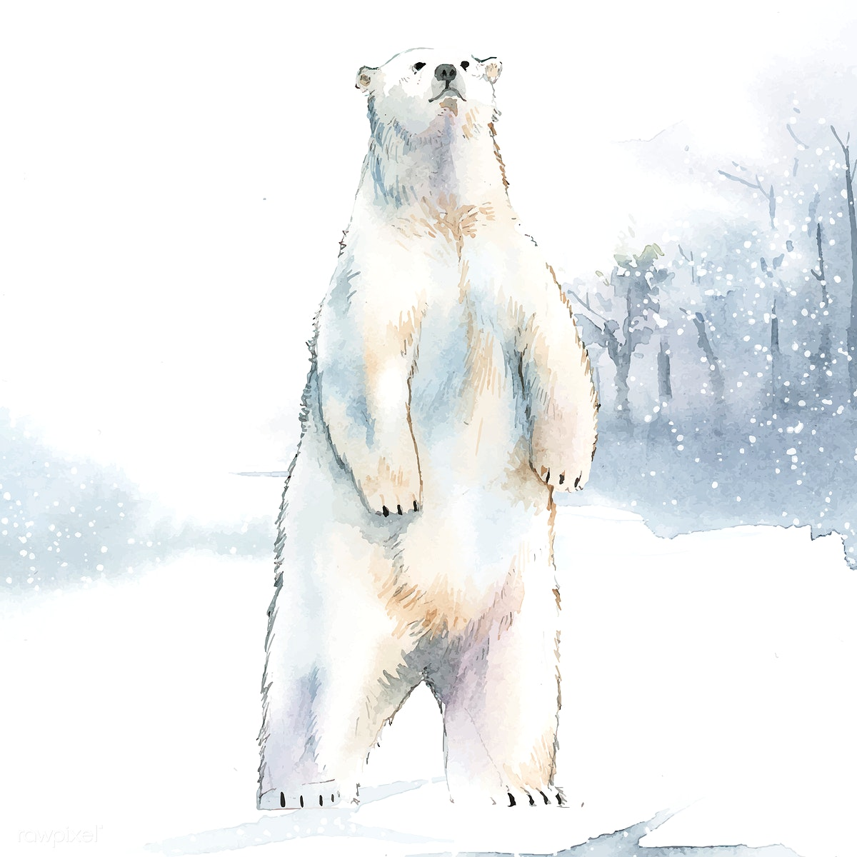 Hand Drawn Polar Bear In The Snow Watercolor Free Stock