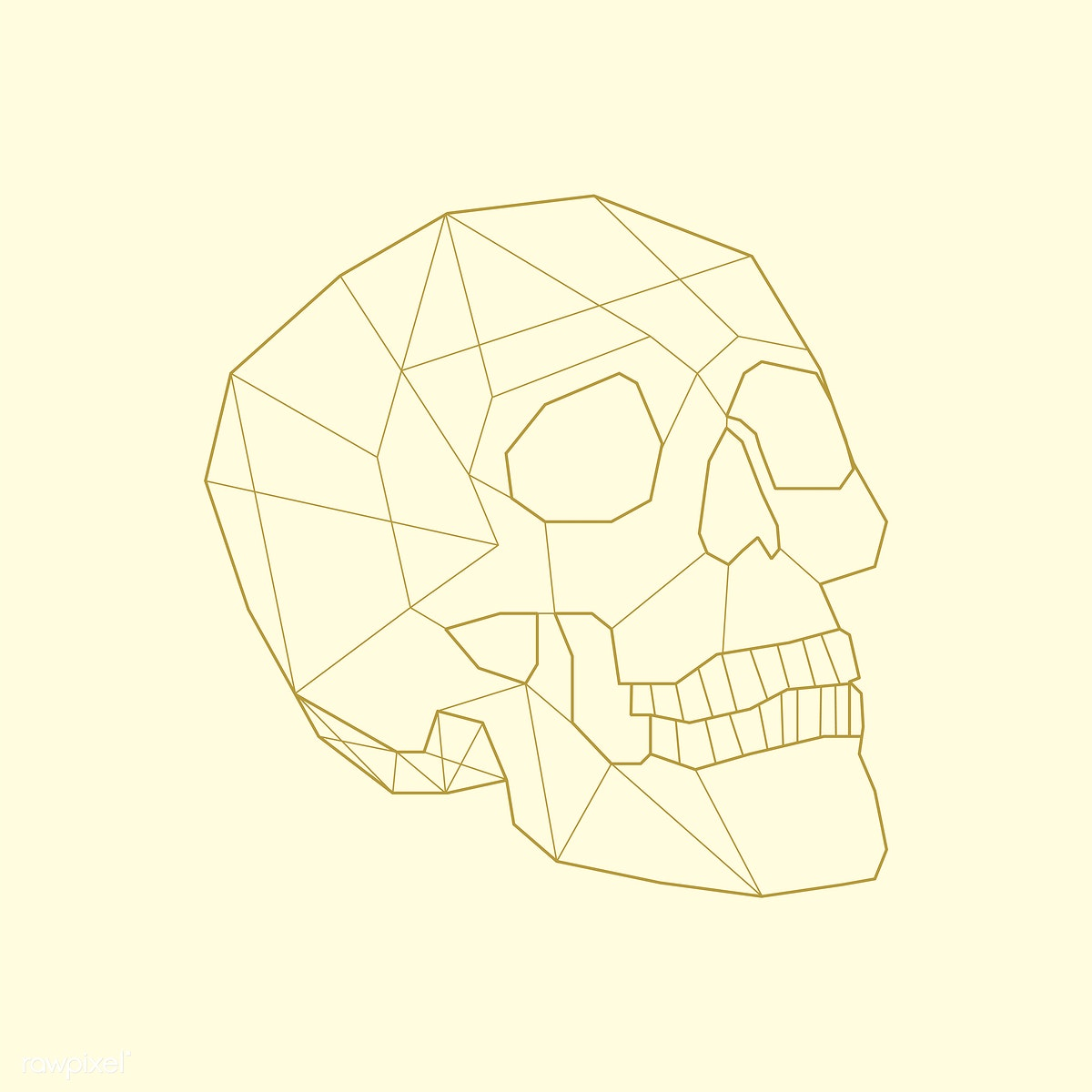 Download premium illustration of Linear illustration of a skull 518058